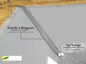 Fosses et lagunes effluents