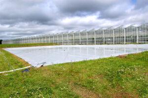 Couverture Algostop bassins maraichers et horticoles